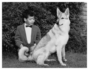 photo of Paul, age 5, with his dog, Dutchess